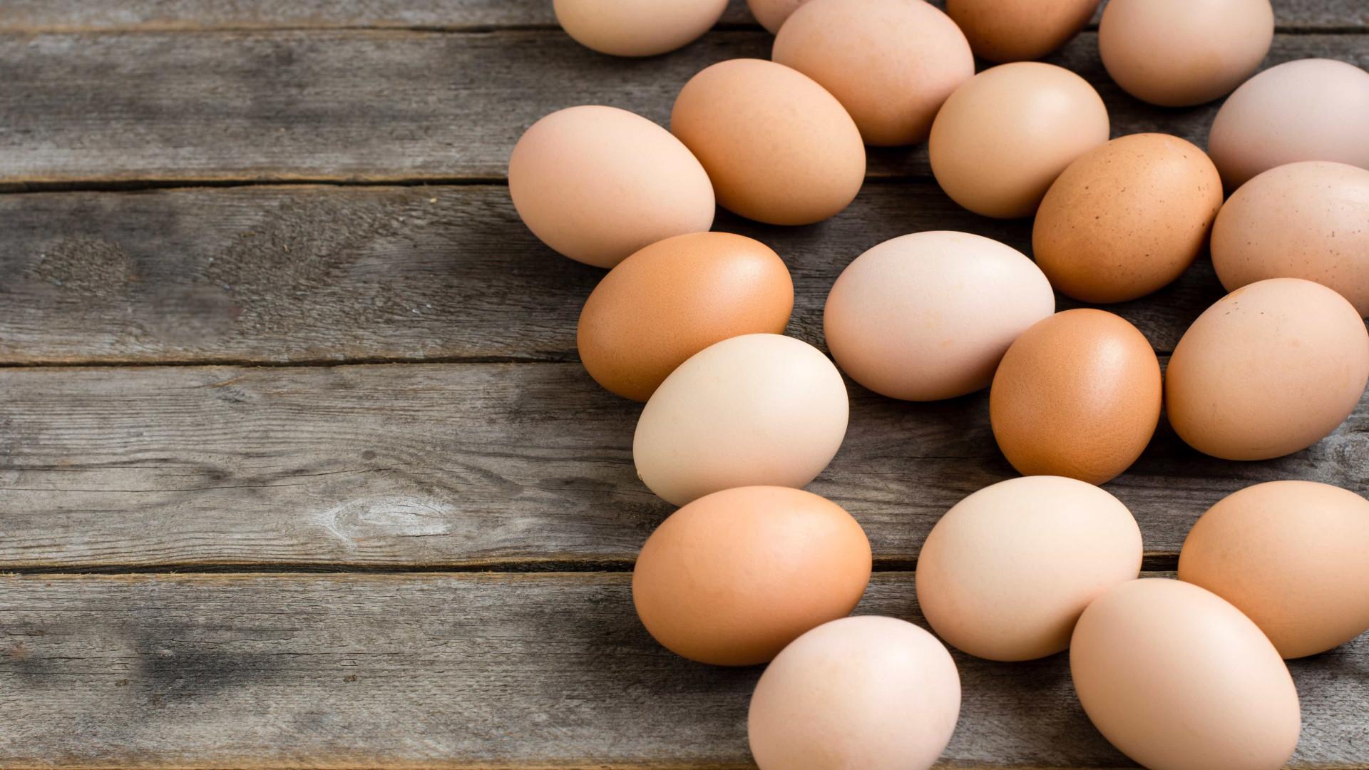 Espanha identifica ovoprodutos contaminados com fipronil