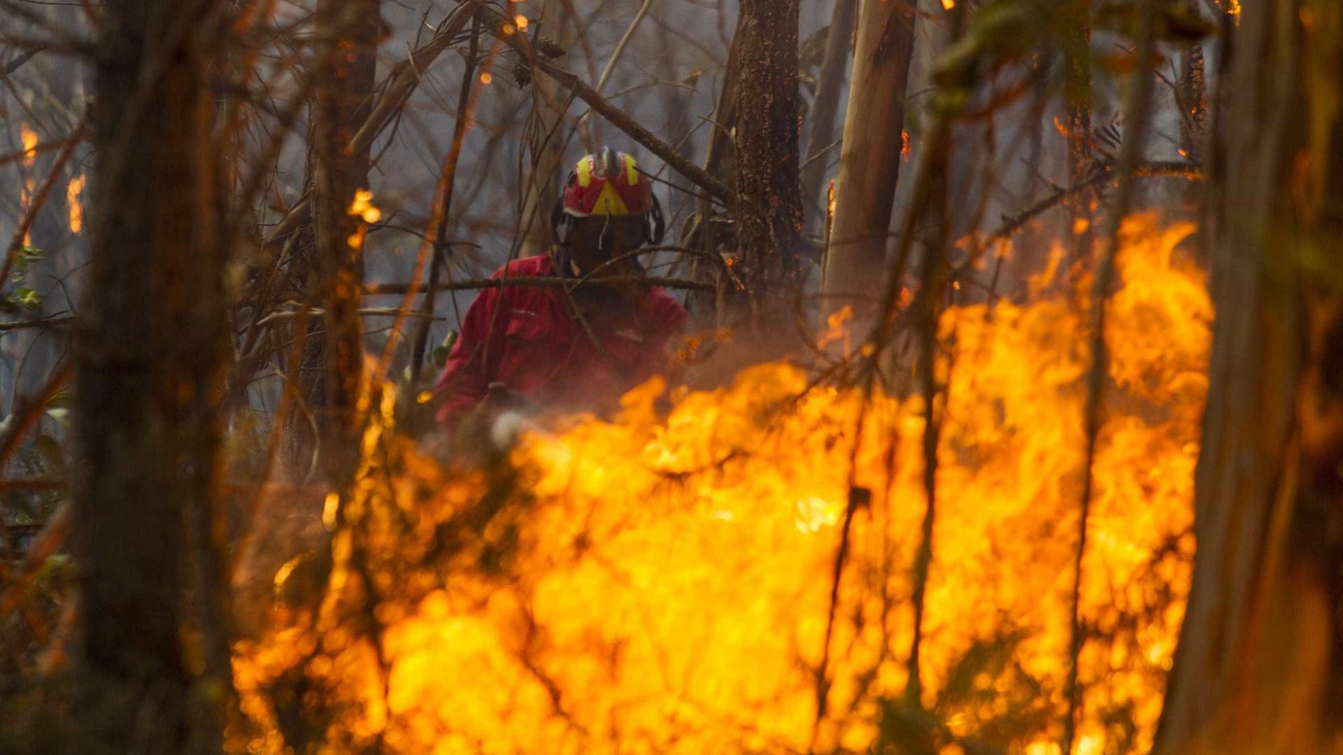 Portugal enfrenta dois grandes incêndios no centro do país