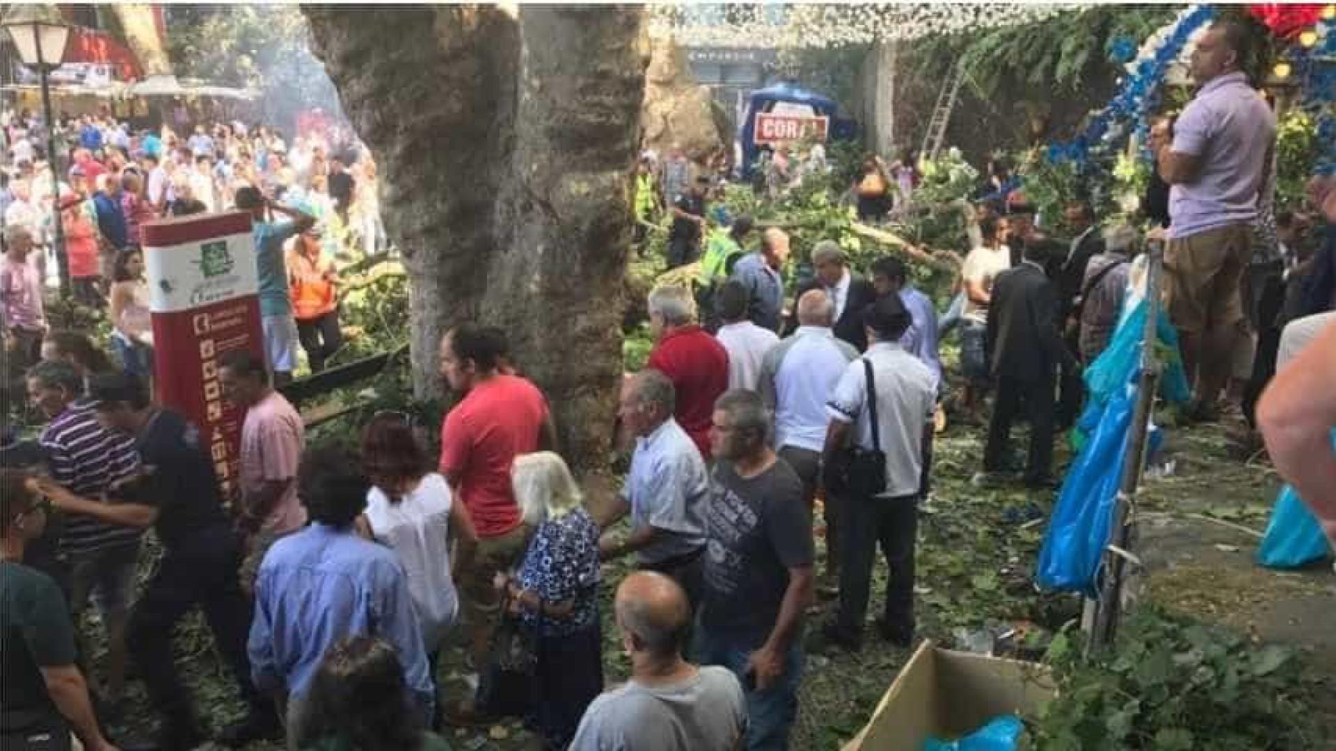 Madeira: Um ferido teve alta hospitalar, seis permanecem internados