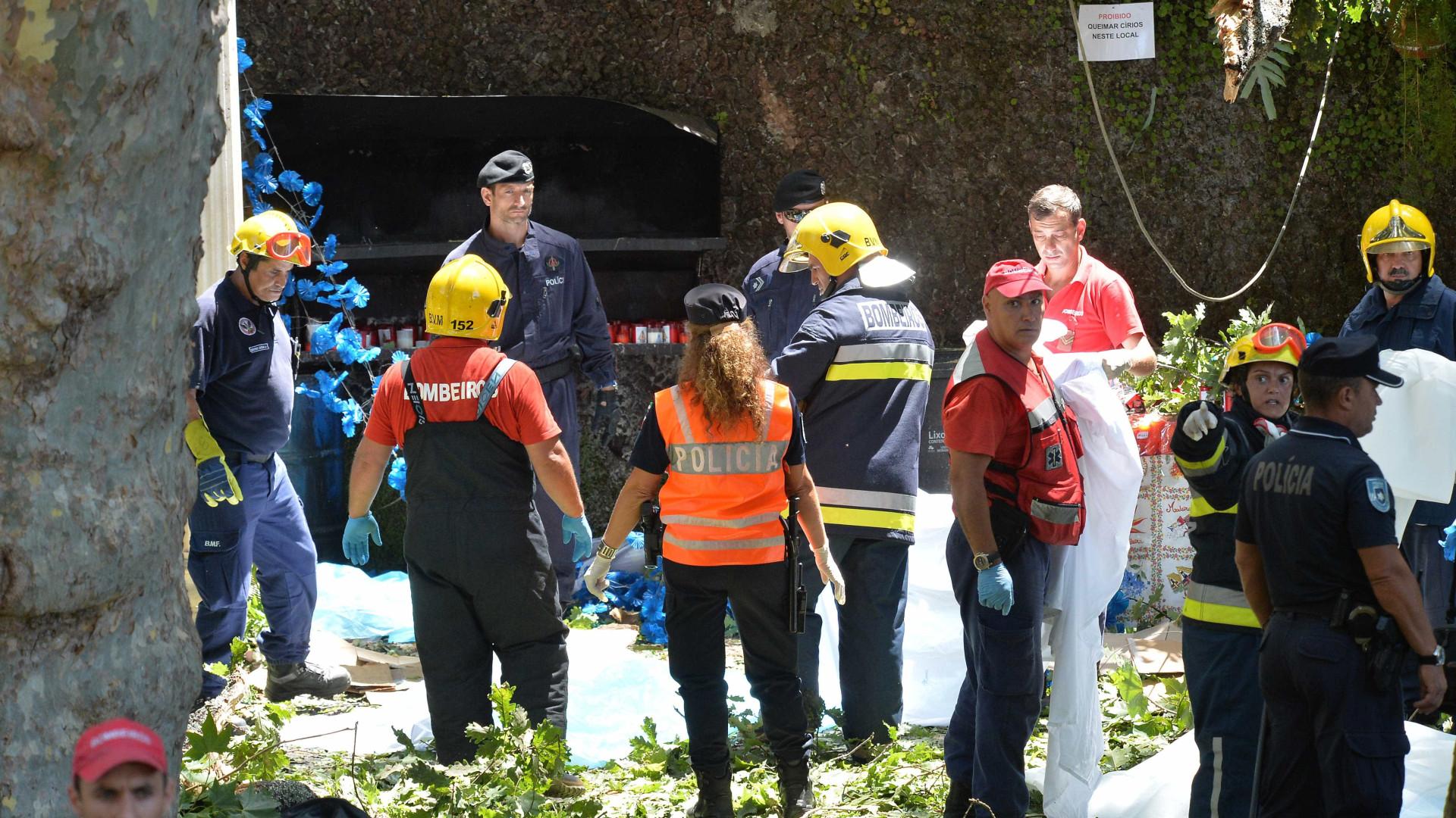Inquérito a queda da árvore no Funchal continua com 3 arguidos