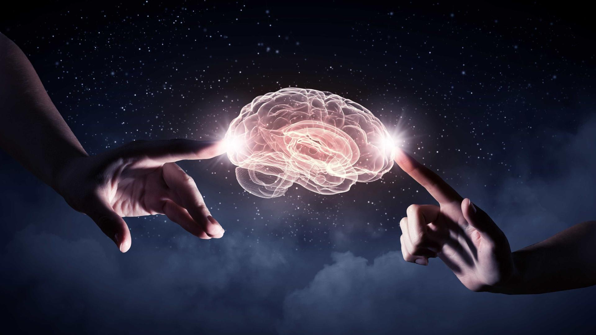 O que vai na sua cabeça? Factos impressionantes sobre o cérebro