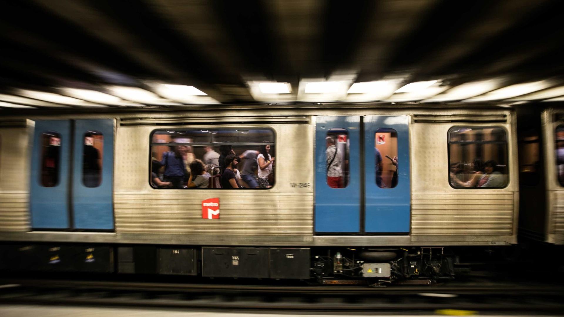 Linha Azul do Metro com perturbações devido à presença de um cão na via