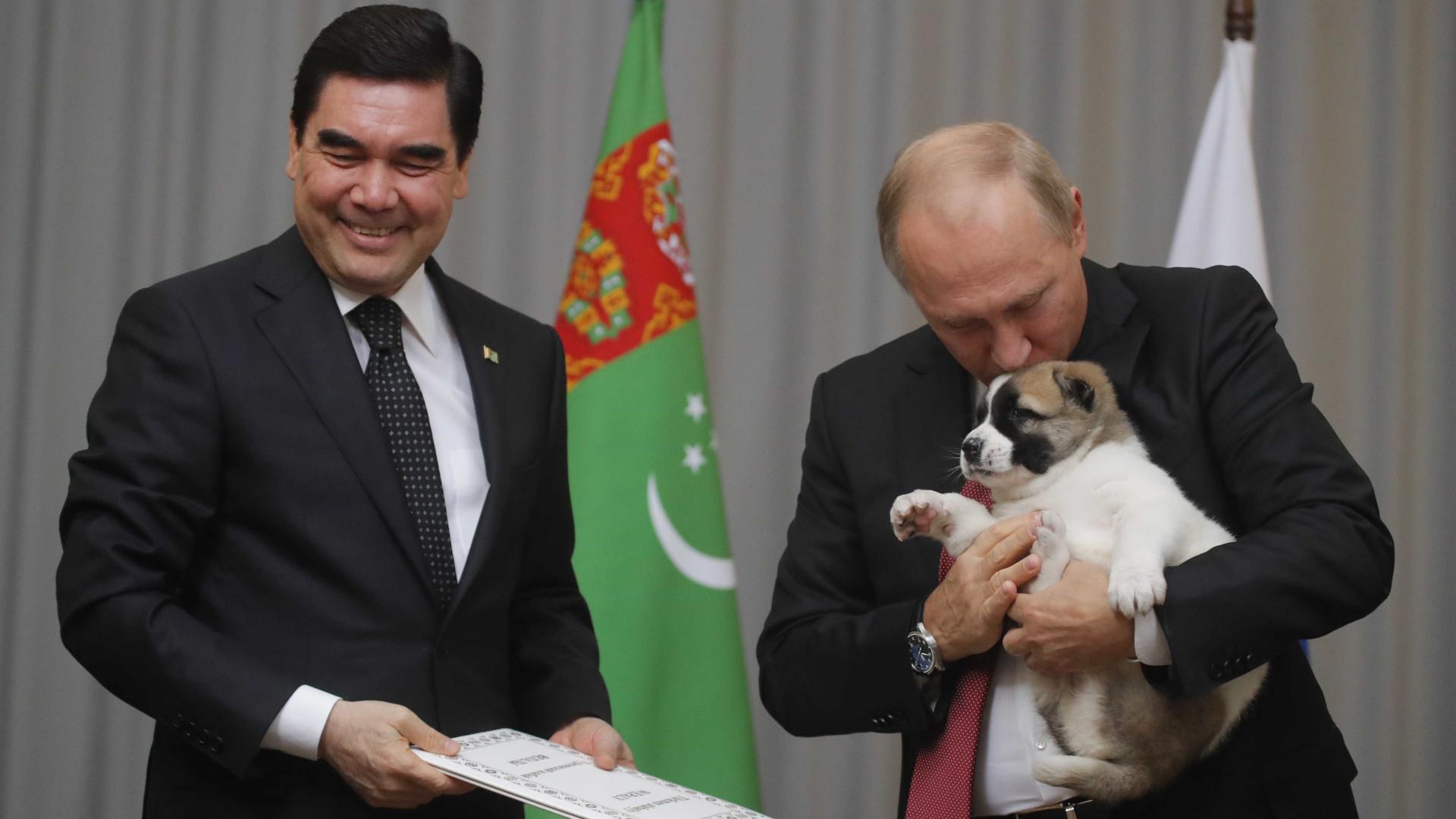 Vladimir Putin recebeu cachorro como presente de aniversário