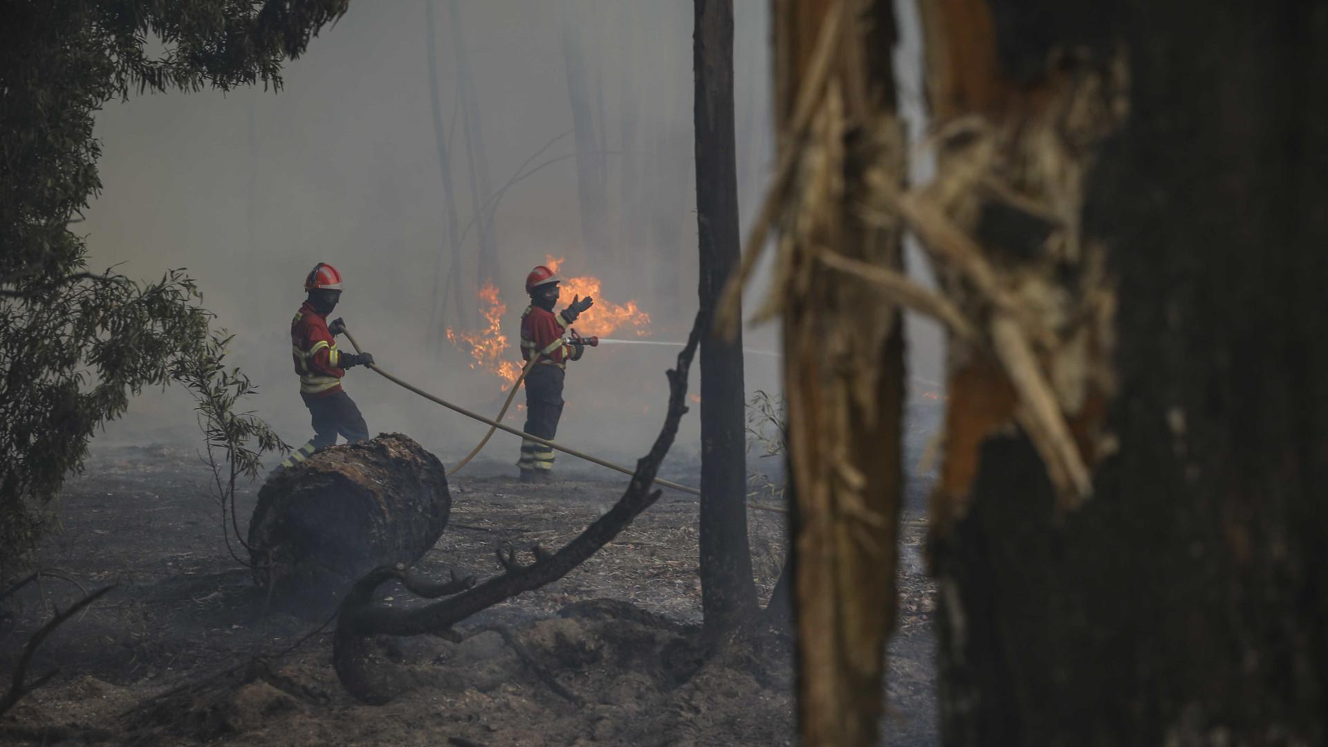 Nadadores Salvadores de Faro recolhem bens para vítimas dos incêndios
