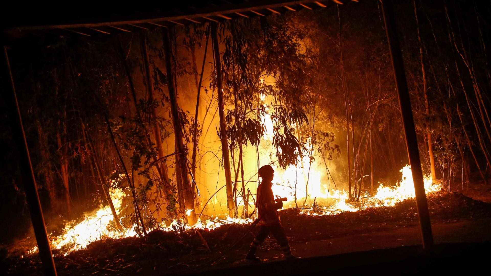 PJ detém pastor indiciado por grande incêndio florestal em Cinfães