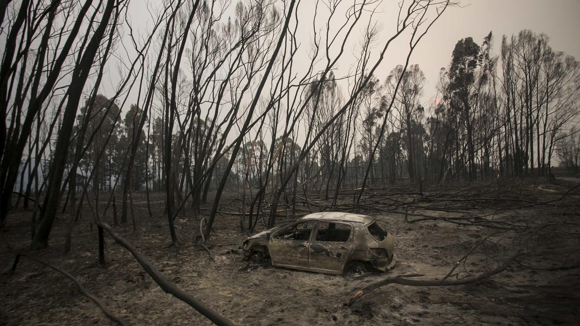 """Manifestações contra incêndios: """"Chega de inação, basta de passividade"""""""