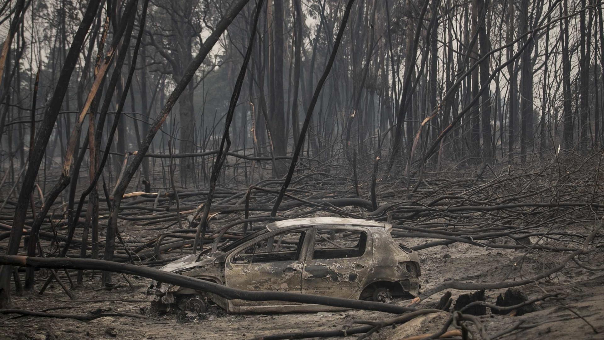 Este ano, chamas queimaram mais de 316 mil hectares em Portugal