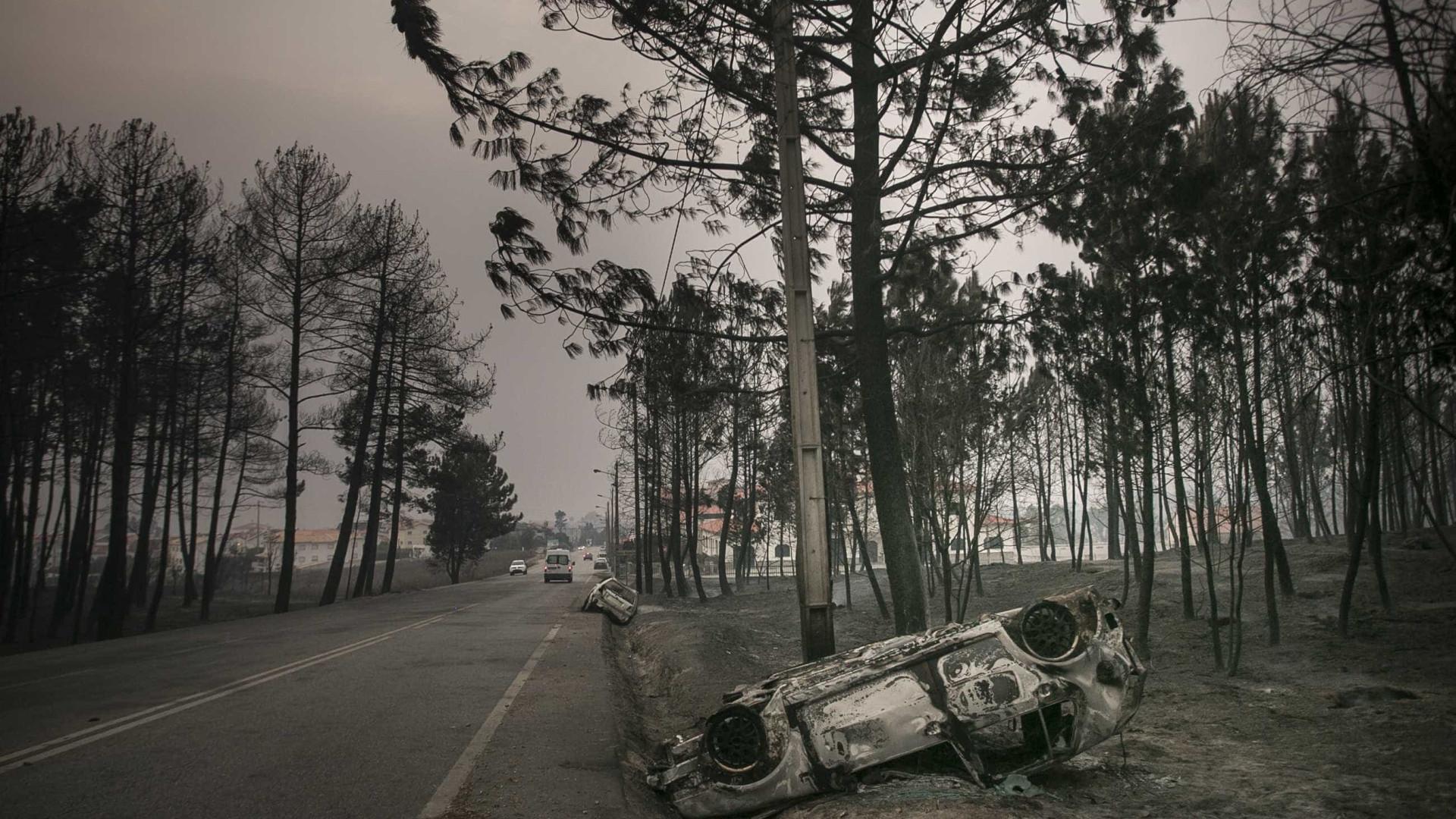 Governo vai apostar mais na prevenção dos incêndios em 2018