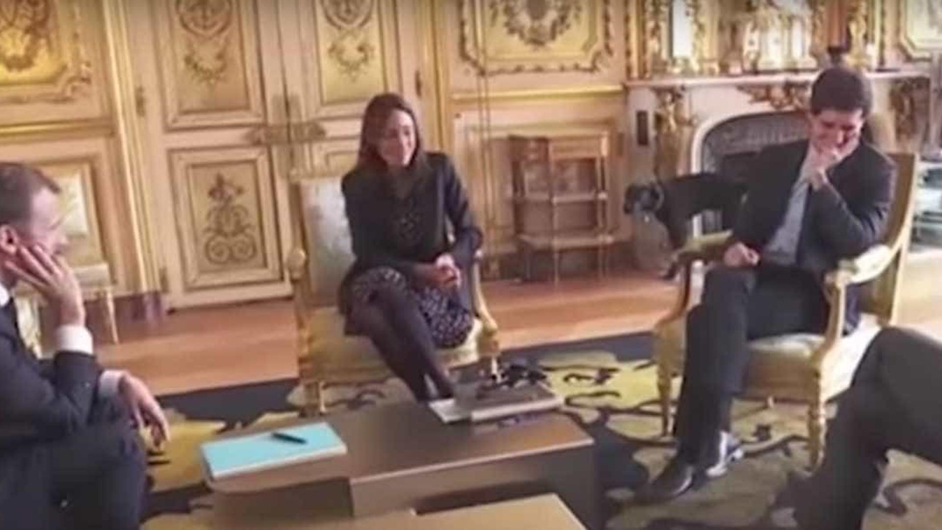Cachorro de Macron faz xixi em lareira durante reunião ministerial — Vídeo