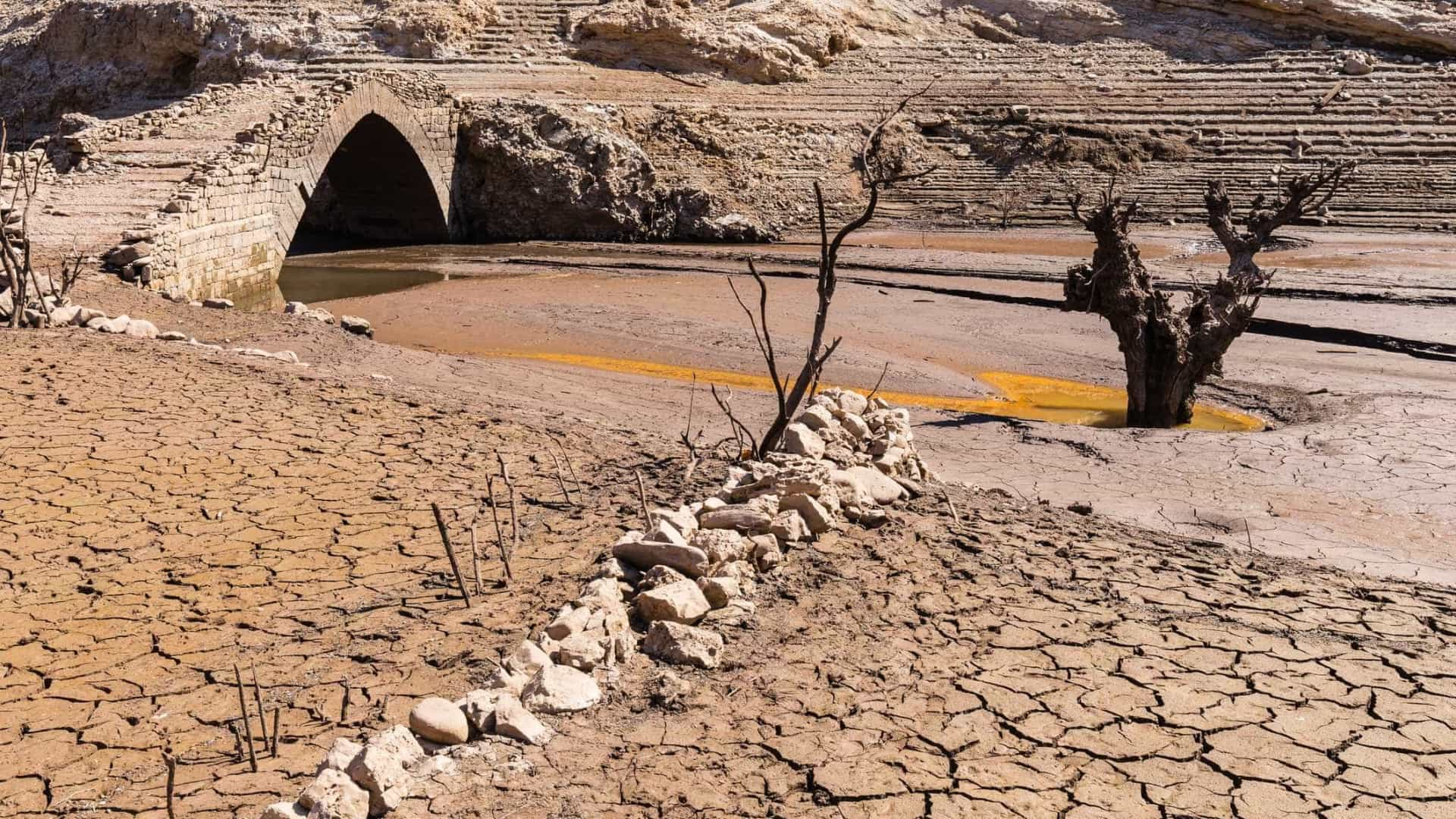 """Níveis de água subterrânea na bacia do Tejo com """"descidas significativas"""""""