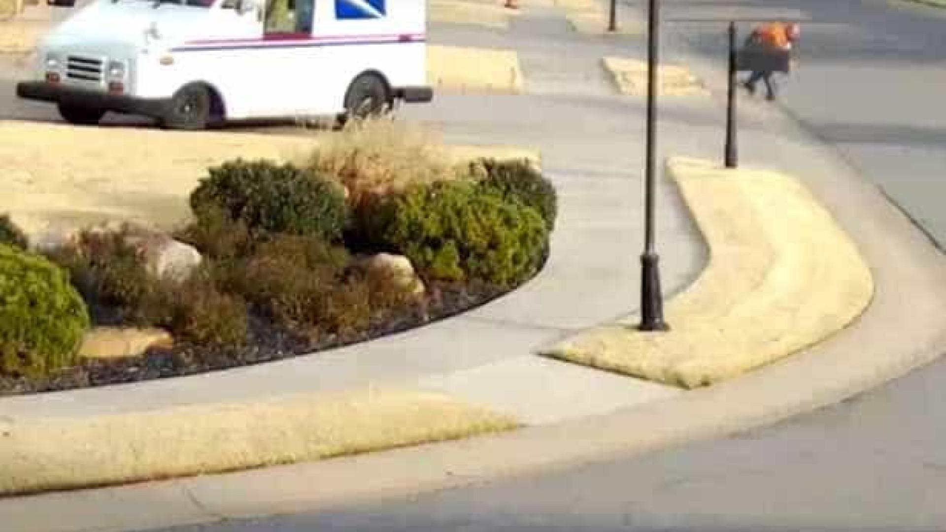 Condutor de entregas cai da carrinha e cai novamente a tentar apanhá-la