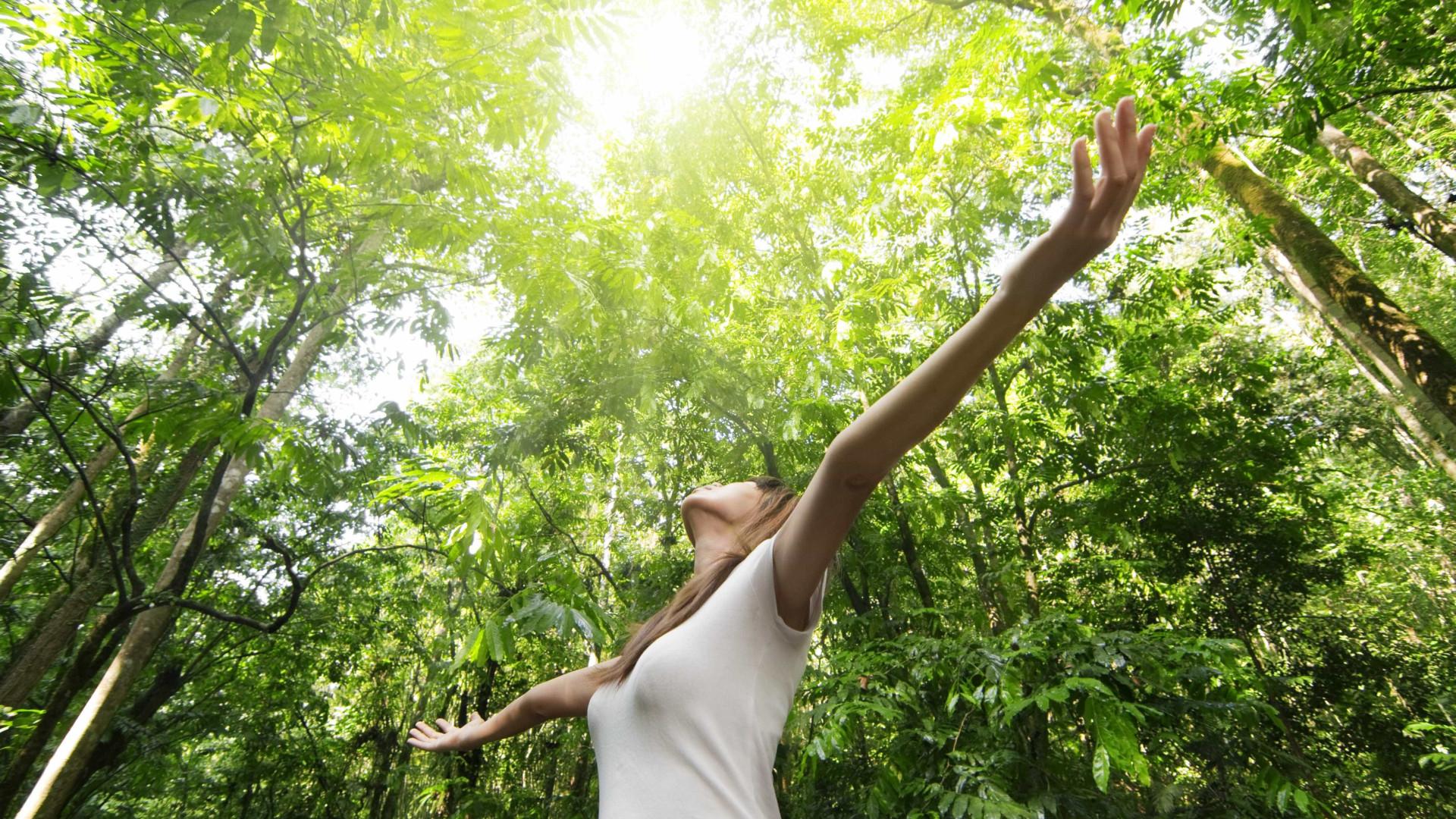 A importância do contacto com a natureza para a sua saúde