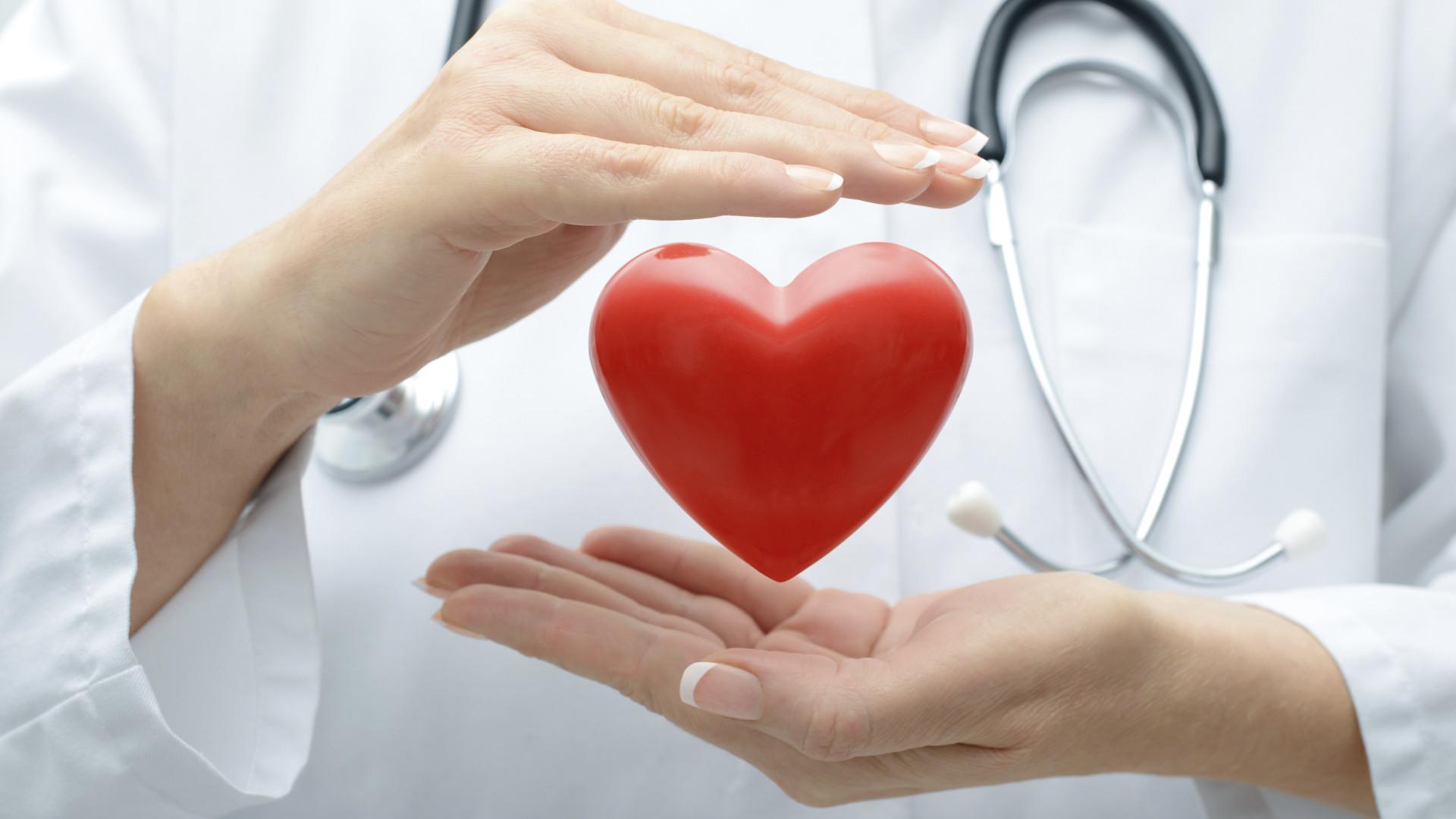 Investigação lusa aponta descoberta de terapias para regenerar o coração