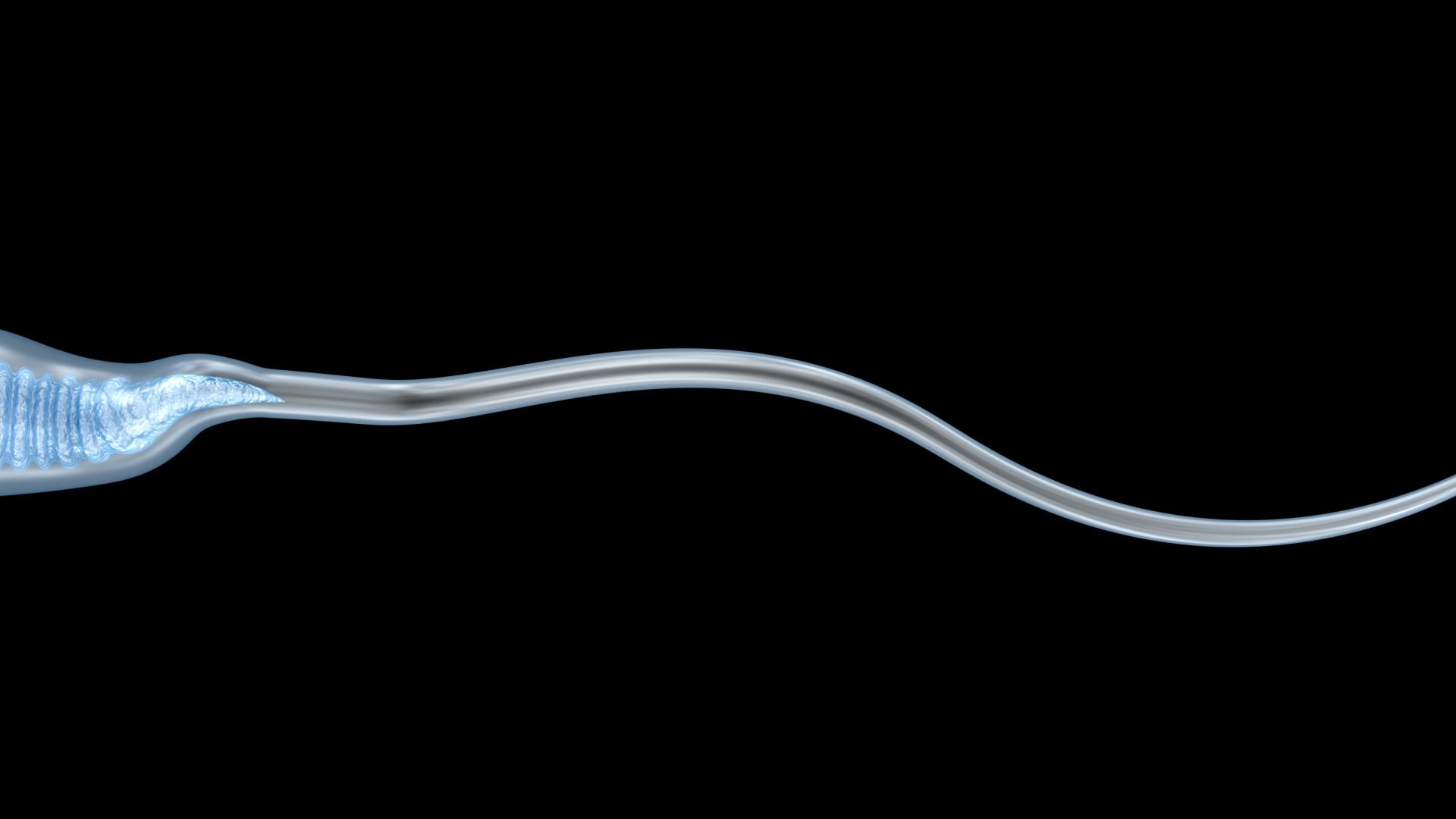 A saúde deles: Antialérgicos podem prejudicar fertilidade masculina