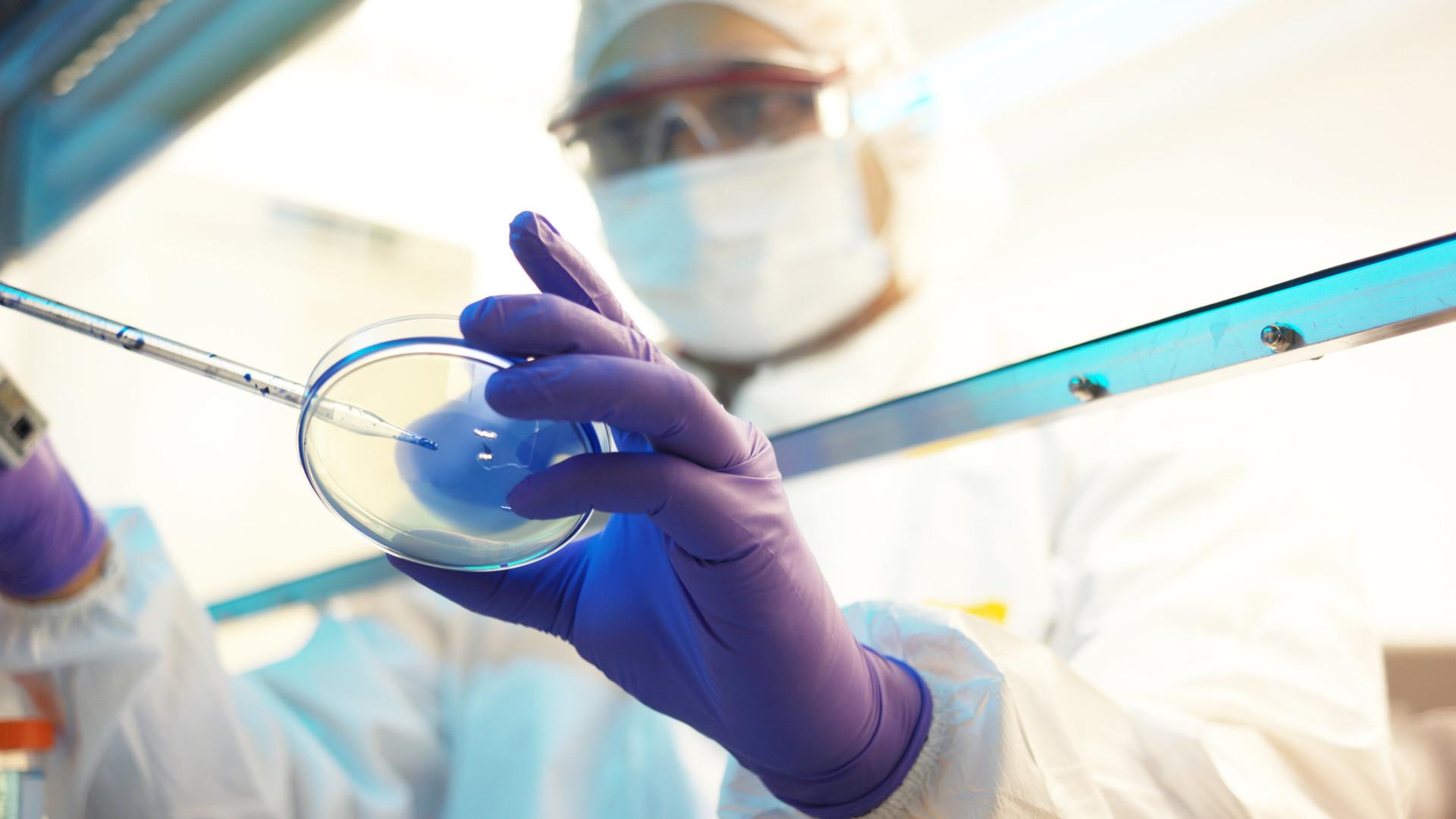 Skripal: Cientista contraria Moscovo e confirma projeto de armas químicas