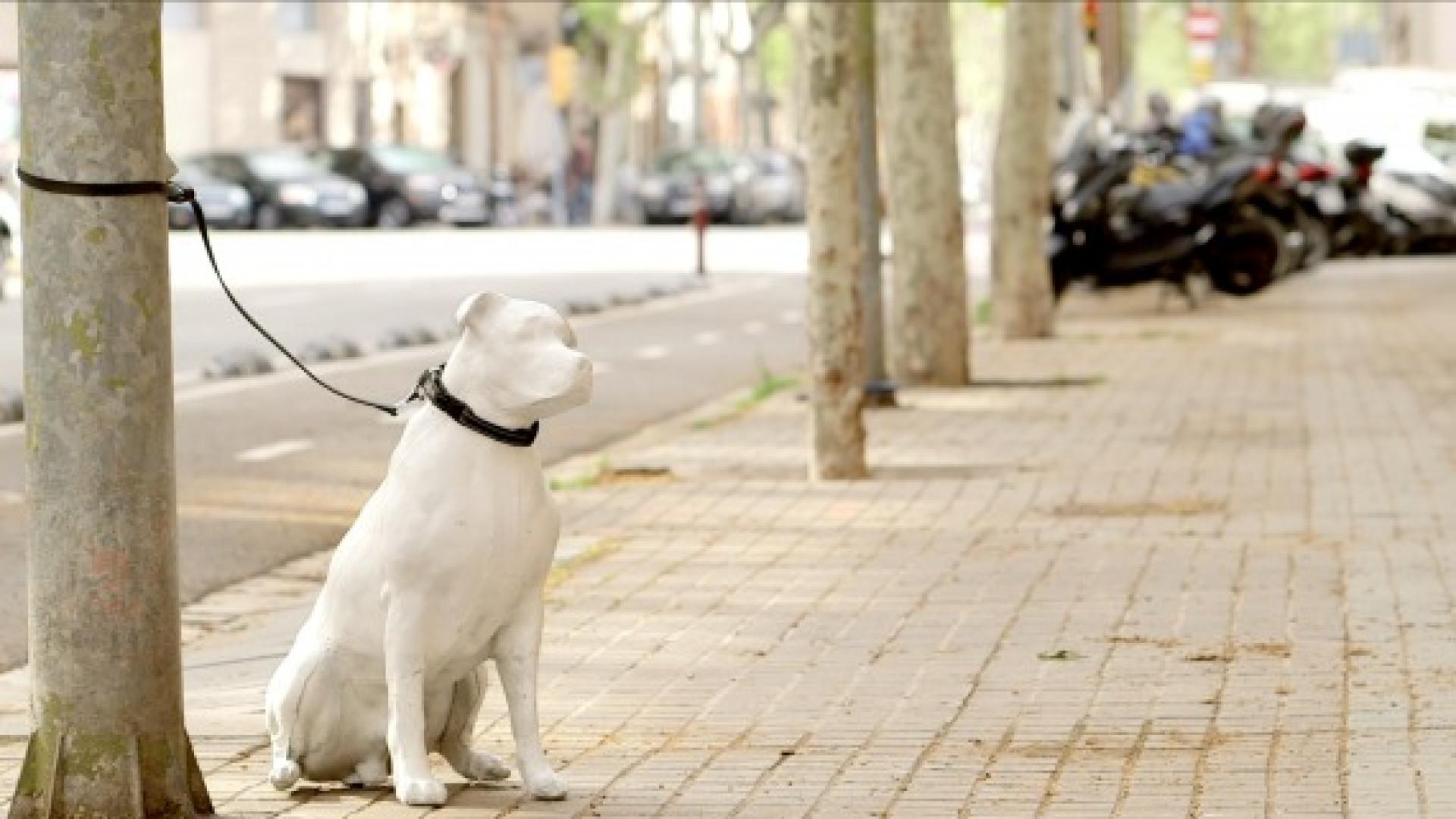 Estátuas de cães instaladas em Barcelona para apelar à adoção