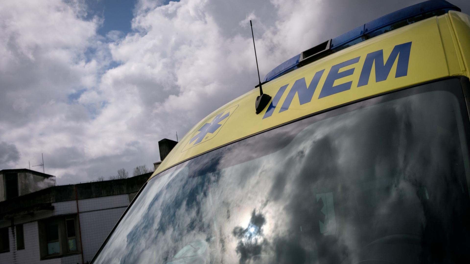 Motorista de pesado de mercadorias morre em despiste na EN251