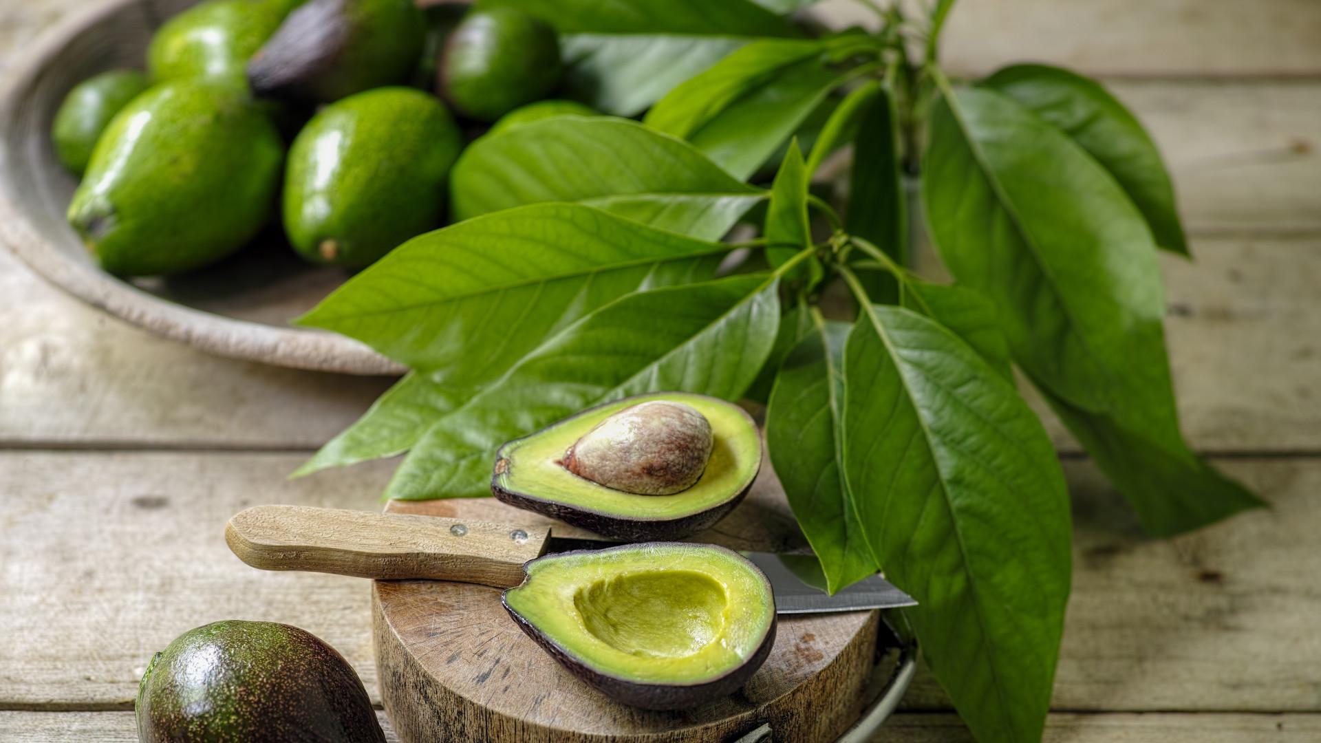 Tire-se a dúvida: Devemos ou não guardar os abacates no frigorífico?