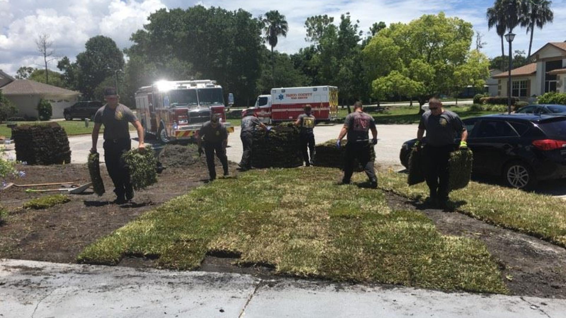 Depois de salvarem homem, bombeiros ainda ajudaram a tratar do quintal