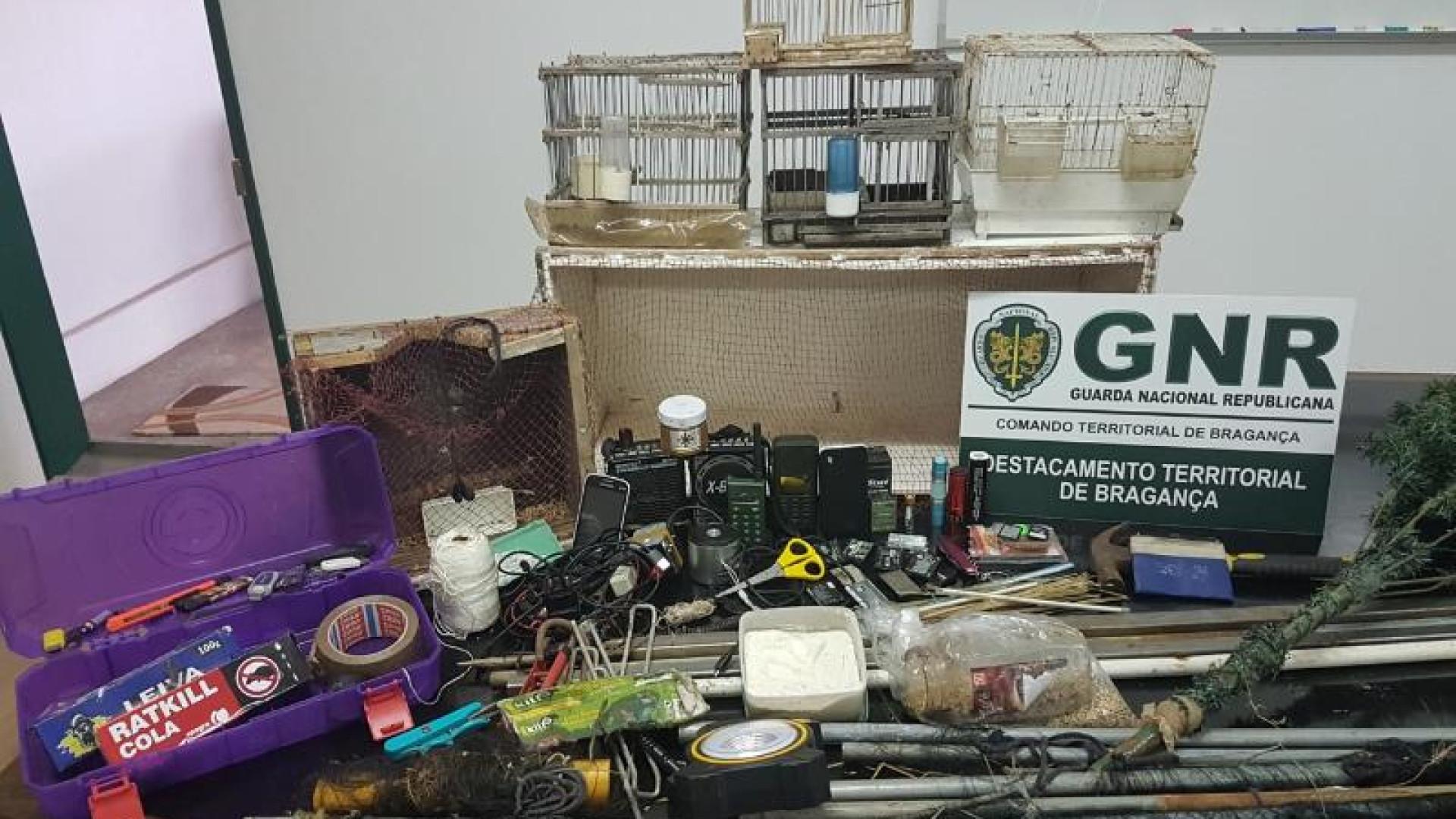 Apanhados pela GNR na posse de aves protegidas