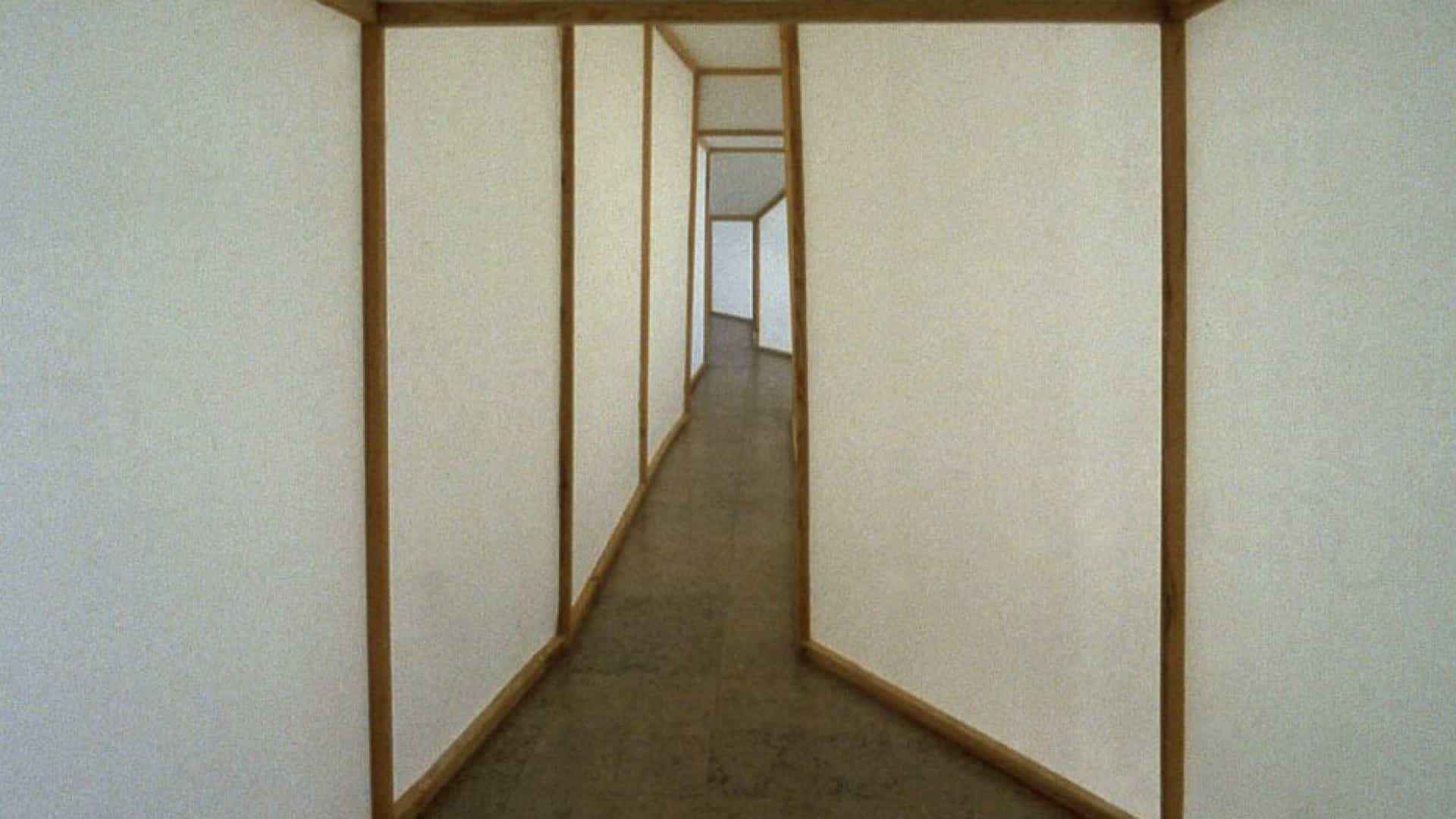 Centro de Artes Visuais, em Coimbra, acolhe exposição sobre Ana Vieira