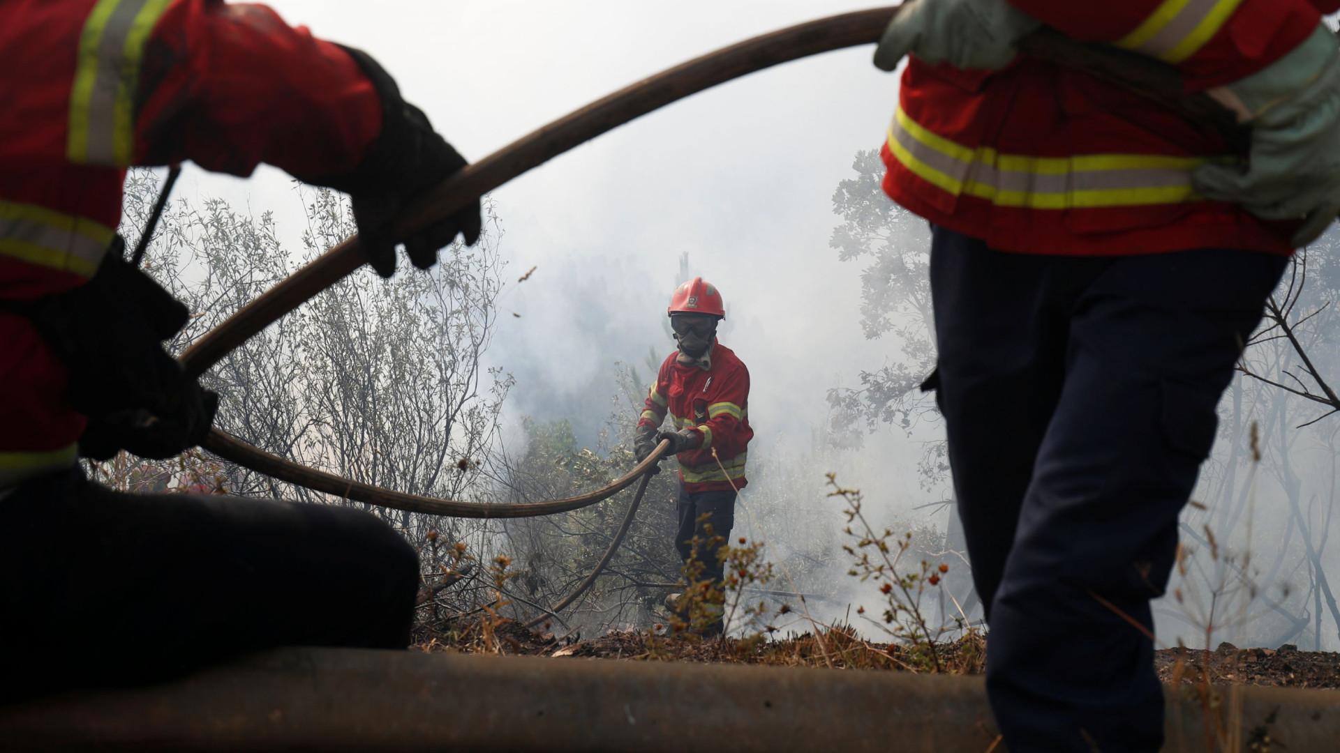 Mais de 200 bombeiros combatem chamas em Alijó, Vila Real