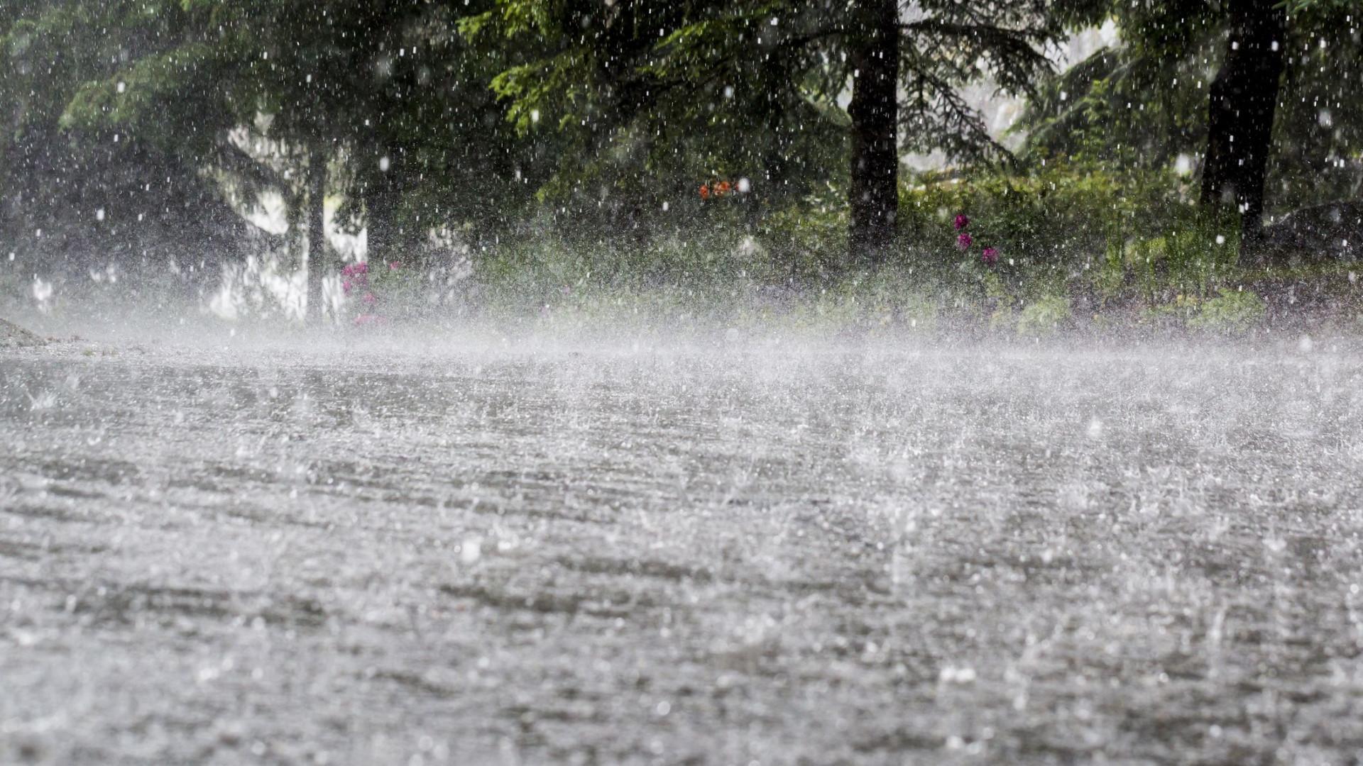Mau tempo: Seguradoras estão a apurar estragos da tempestade Leslie