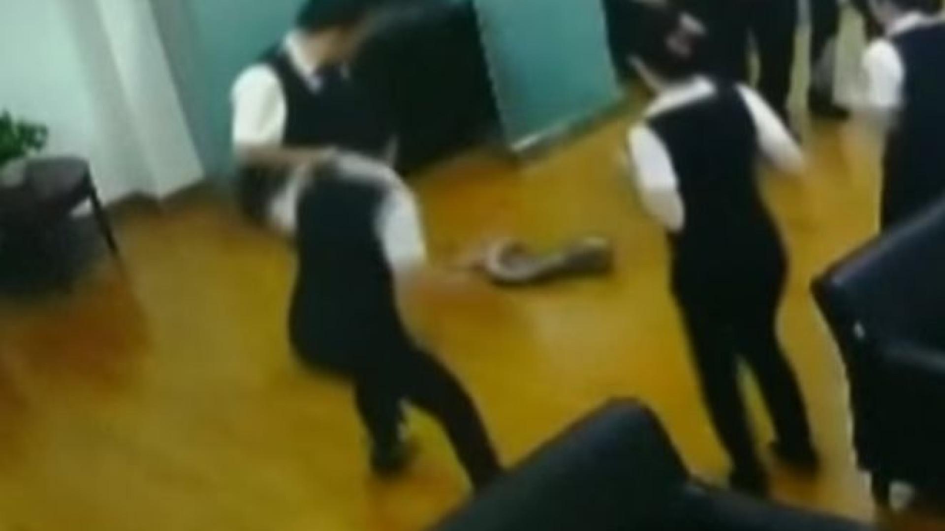 Pitão cai de teto e interrompe reunião em banco na China