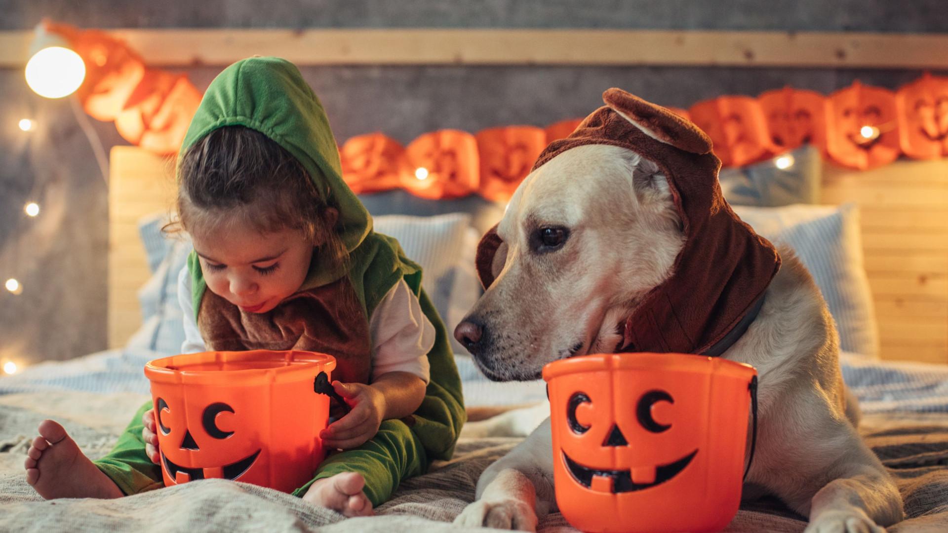 """É Halloween, """"deixe os mais novos comer os doces que quiserem"""""""