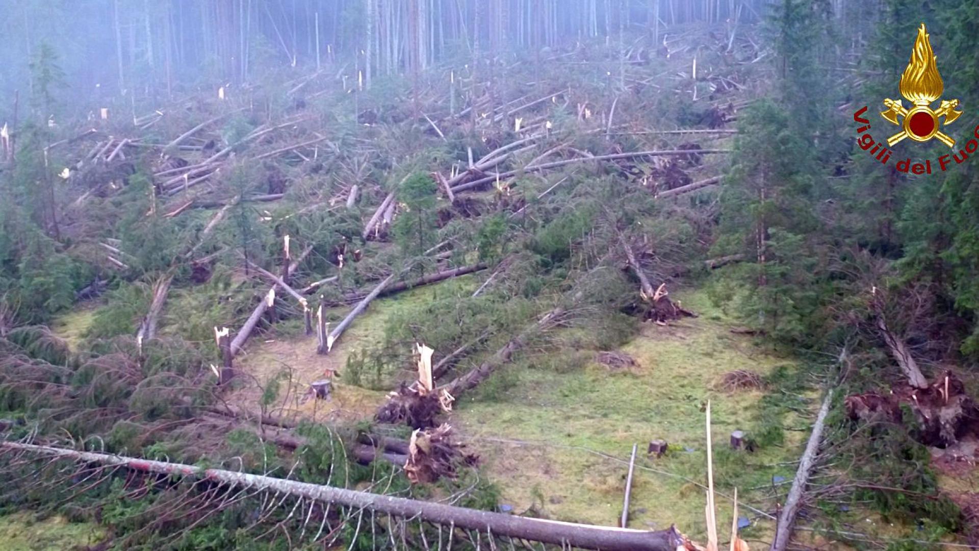 Tempestades em Itália causaram já 17 mortos e milhões de árvores caídas