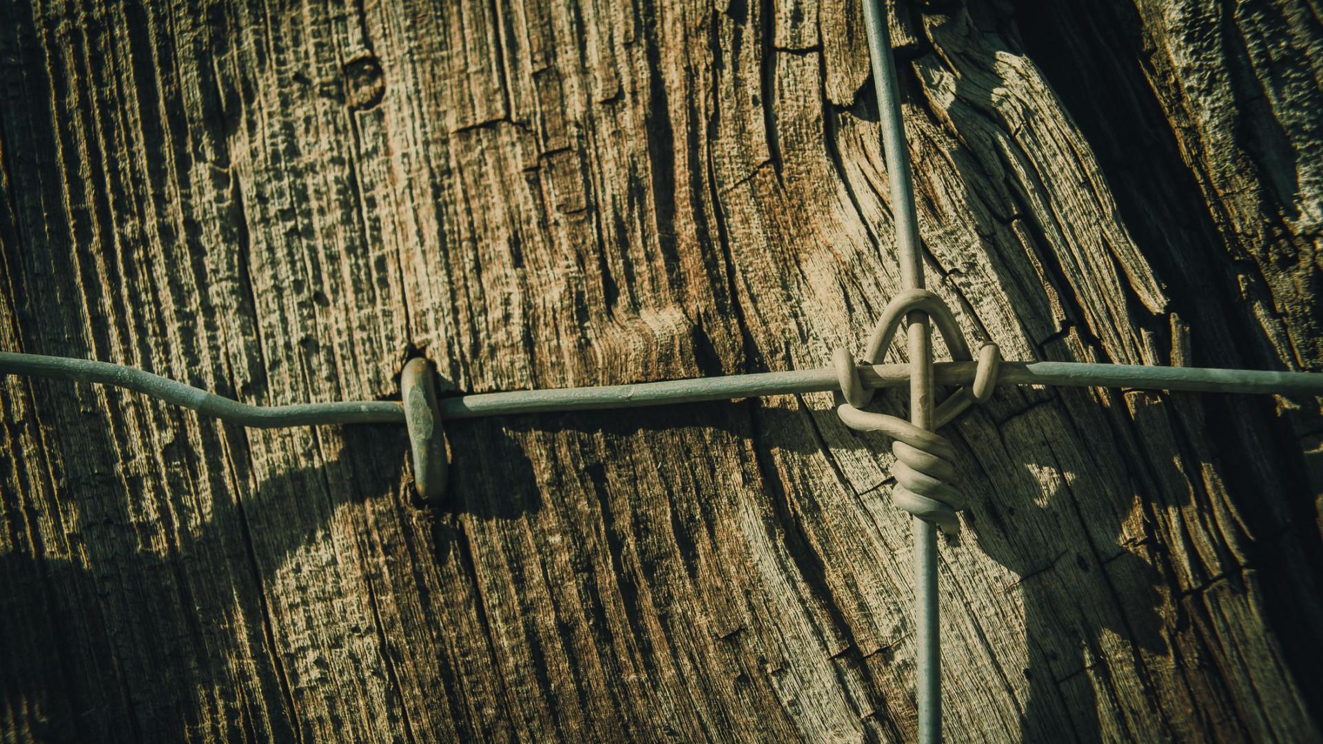 Homem morre em queda de poste na ilha de São Miguel