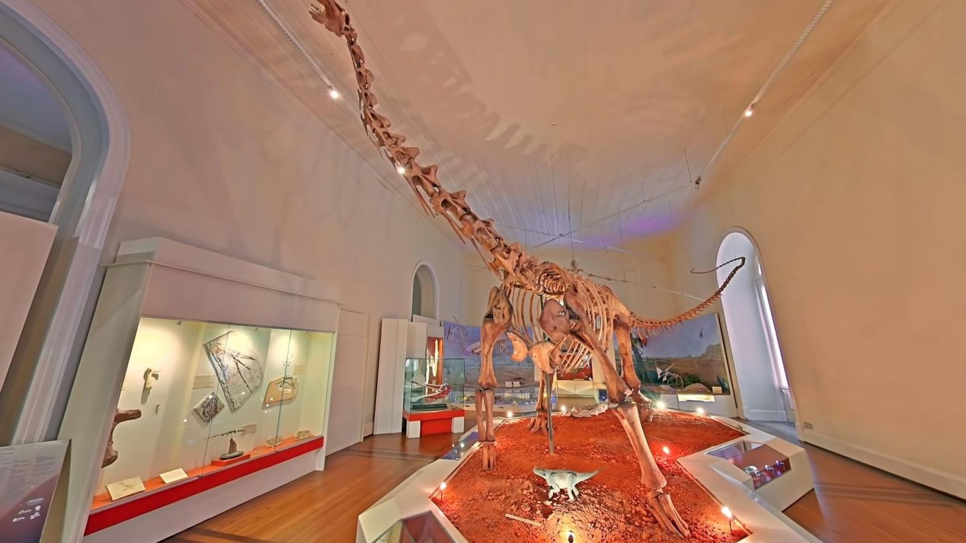 Museu Nacional do Brasil foi recriado virtualmente pela Google