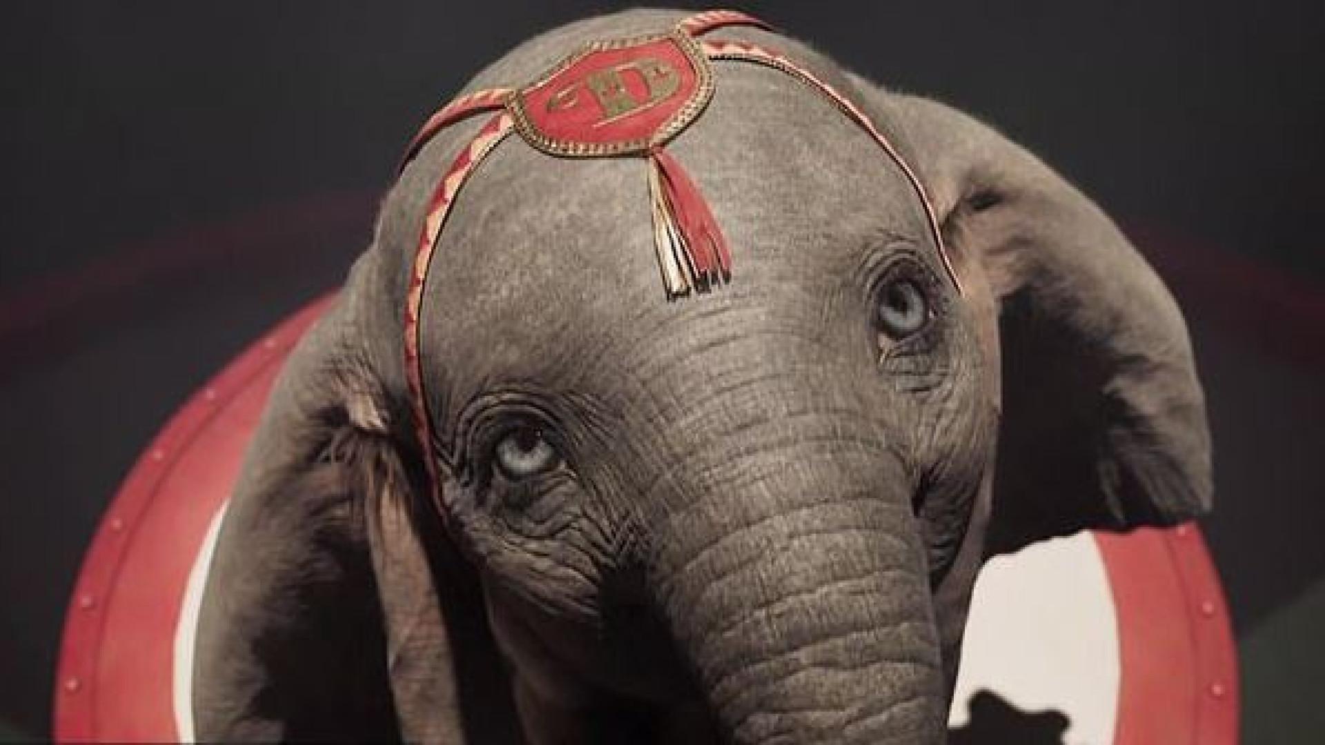 Novo trailer mostra mais um bocadinho de 'Dumbo', assinado por Tim Burton