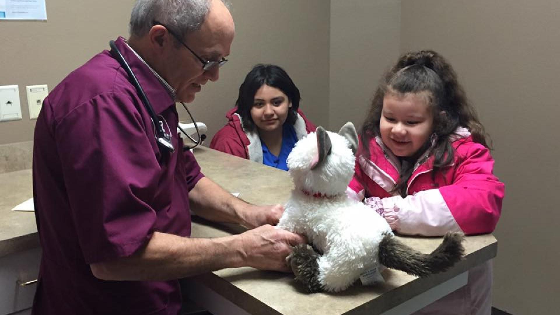 Veterinário examina gata de peluche 'doente' de menina autista