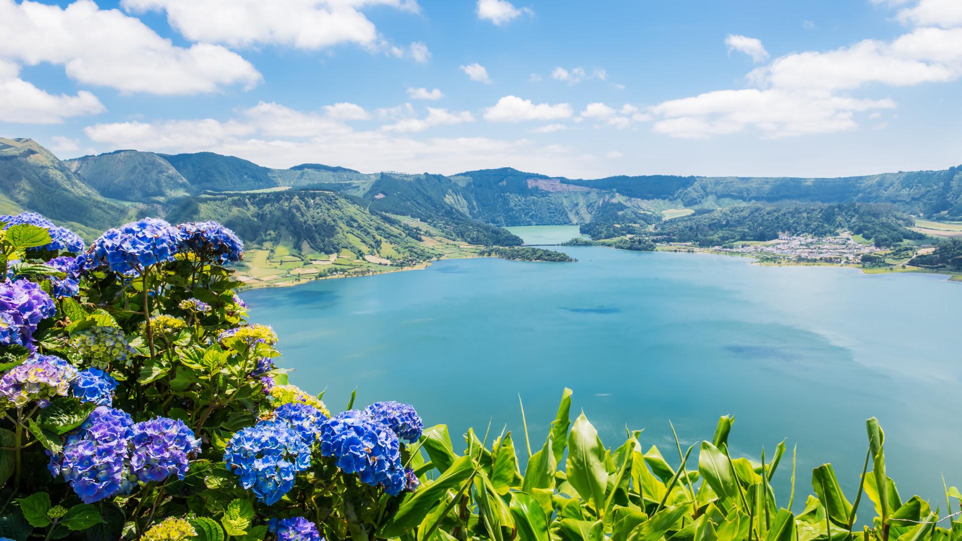 Festival das Vacas Felizes sorteia uma viagem aos Açores todas as semanas