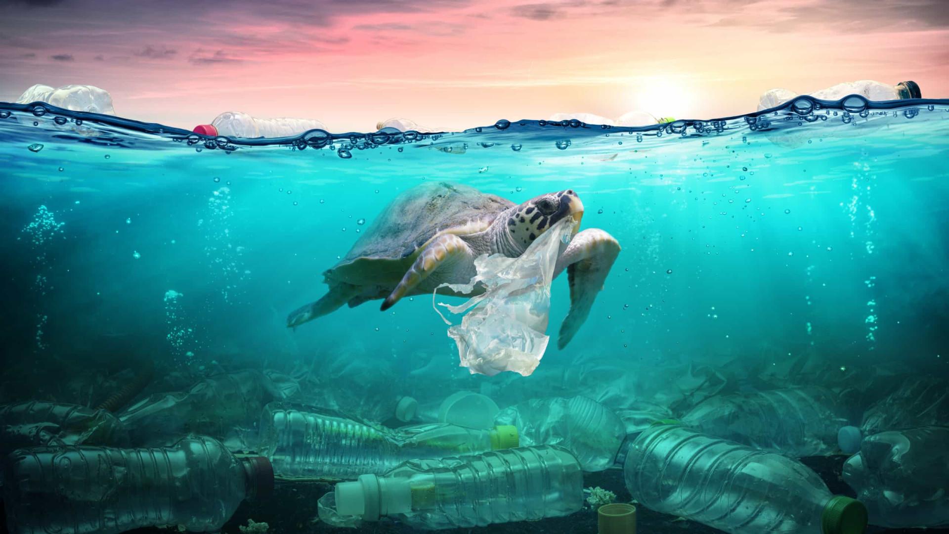Cada pessoa ingere até 121 mil partículas de plástico por ano