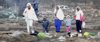"""""""Devemos desmantelar completa e definitivamente o campo"""" de Calais"""