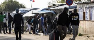 'Selva' de Calais está a ser evacuada. Mais de seis mil recolocados