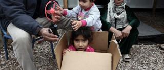 Anunciado programa para que refugiados regressem a casa