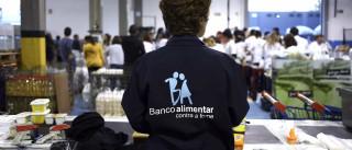 Campanha do Banco Alimentar arranca com mais de 40 mil voluntários