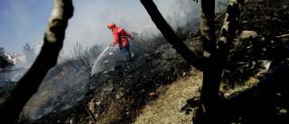 Governo adia fim do período crítico de incêndios para 15 de outubro