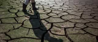 Situação de seca diminuiu no mês de novembro