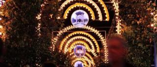 Dia de Viriato regressa no domingo à Feira de S. Mateus de Viseu