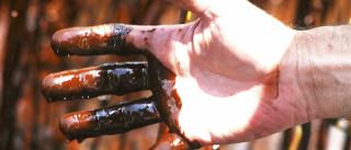 Preço do barril de petróleo desce 1,50% e fecha sessão nos 49,71 dólares