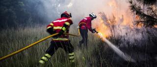 Trolha detido por atear incêndio em Paços de Ferreira