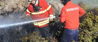Uma centena de bombeiros combate fogo em Castelo Branco