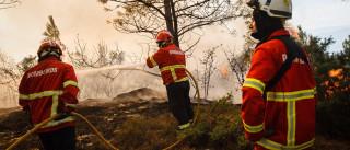 Mais de 160 bombeiros combatem fogo em Vila Velha de Ródão