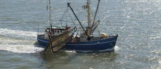 Ministros das Pescas da UE reúnem-se para decidir limites das capturas
