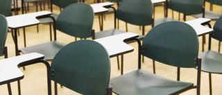 Quase 3 mil medidas apresentadas para promoção do sucesso escolar