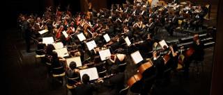 Orquestra Estágio Gulbenkian inicia digressão nacional na quarta-feira